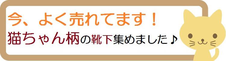 【今年の超売れ筋】猫柄の靴下